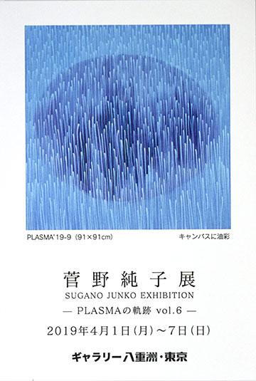 2019年 菅野純子展 PLAZMAの軌跡 Vol.6